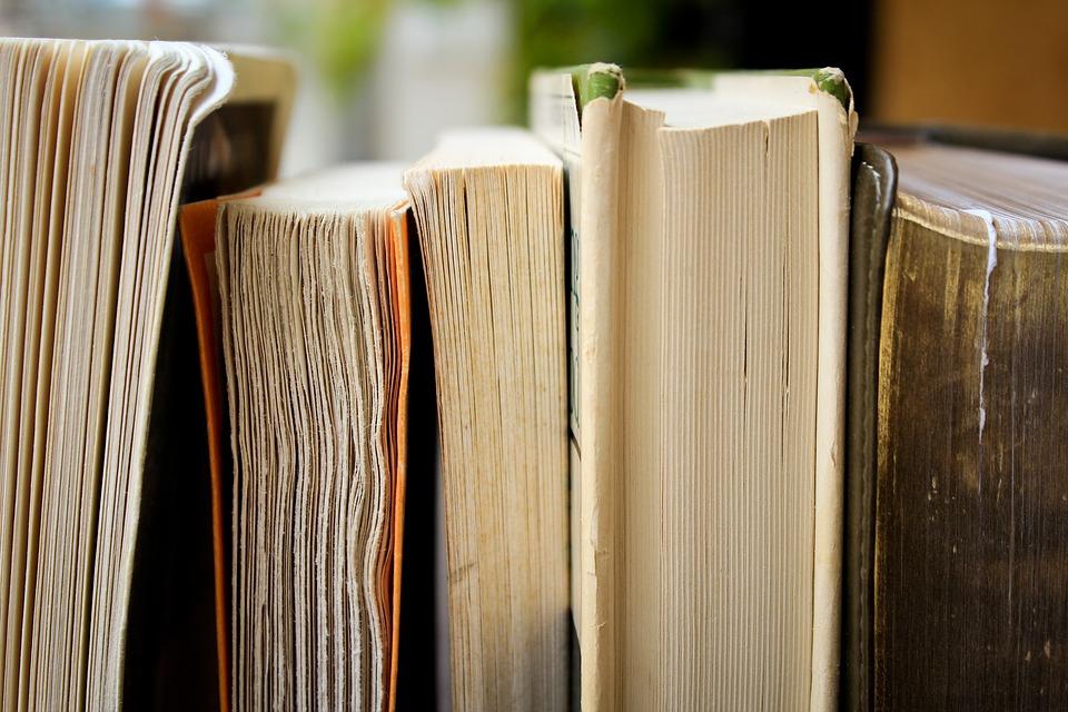 bibliothèque, crédit photo :
